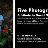 five photogs